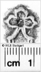 Image Description for https://www.wlb-stuttgart.de/kyriss/images/s0135307.jpg