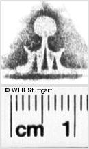 Image Description for https://www.wlb-stuttgart.de/kyriss/images/s0135310.jpg