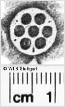 Image Description for https://www.wlb-stuttgart.de/kyriss/images/s0141209.jpg