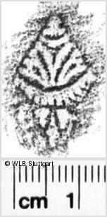 Image Description for https://www.wlb-stuttgart.de/kyriss/images/s0142109.jpg