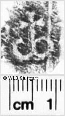 Image Description for https://www.wlb-stuttgart.de/kyriss/images/s0142519.jpg