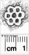 Image Description for https://www.wlb-stuttgart.de/kyriss/images/s0143524.jpg
