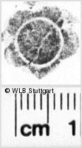 Image Description for https://www.wlb-stuttgart.de/kyriss/images/s0143542.jpg