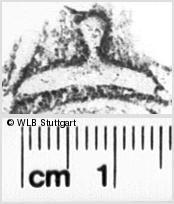 Image Description for https://www.wlb-stuttgart.de/kyriss/images/s0143615.jpg