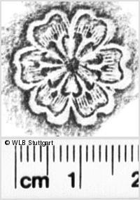 Image Description for https://www.wlb-stuttgart.de/kyriss/images/s0143706.jpg