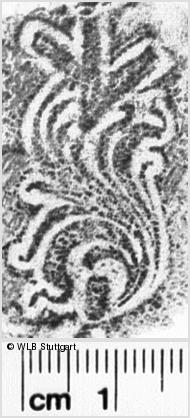 Image Description for https://www.wlb-stuttgart.de/kyriss/images/s0144040.jpg