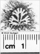 Image Description for https://www.wlb-stuttgart.de/kyriss/images/s0151013.jpg