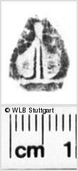 Image Description for https://www.wlb-stuttgart.de/kyriss/images/s0152306.jpg
