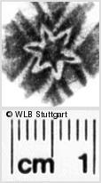 Image Description for https://www.wlb-stuttgart.de/kyriss/images/s0155108.jpg