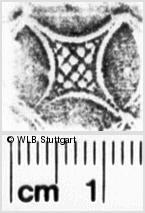 Image Description for https://www.wlb-stuttgart.de/kyriss/images/s0156651.jpg