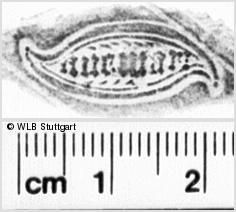 Image Description for https://www.wlb-stuttgart.de/kyriss/images/s0156901.jpg