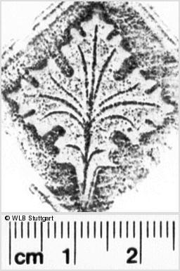 Image Description for https://www.wlb-stuttgart.de/kyriss/images/s0161801.jpg