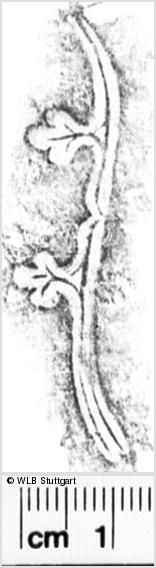 Image Description for https://www.wlb-stuttgart.de/kyriss/images/s0168006.jpg