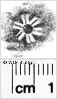 Image Description for https://www.wlb-stuttgart.de/kyriss/images/s0183407.jpg