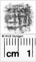 Image Description for https://www.wlb-stuttgart.de/kyriss/images/s0184204.jpg