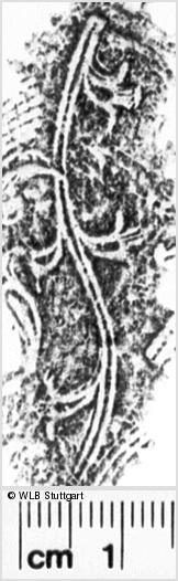 Image Description for https://www.wlb-stuttgart.de/kyriss/images/s0184904.jpg