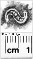 Image Description for https://www.wlb-stuttgart.de/kyriss/images/s0187904.jpg