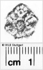 Image Description for https://www.wlb-stuttgart.de/kyriss/images/s0193428.jpg