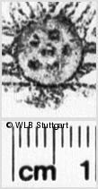 Image Description for https://www.wlb-stuttgart.de/kyriss/images/s0195224.jpg