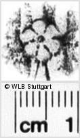 Image Description for https://www.wlb-stuttgart.de/kyriss/images/s0201108.jpg