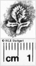 Image Description for https://www.wlb-stuttgart.de/kyriss/images/s0202702.jpg