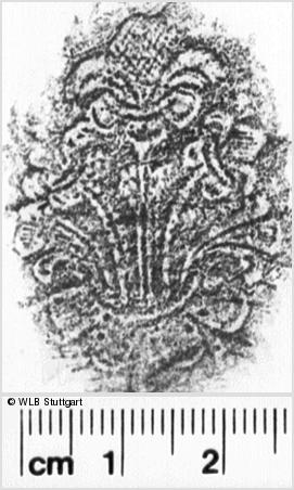 Image Description for https://www.wlb-stuttgart.de/kyriss/images/s0203613.jpg