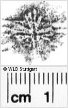 Image Description for https://www.wlb-stuttgart.de/kyriss/images/s0204809.jpg