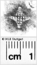 Image Description for https://www.wlb-stuttgart.de/kyriss/images/s0210508.jpg