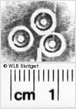 Image Description for https://www.wlb-stuttgart.de/kyriss/images/s0210509.jpg