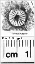 Image Description for https://www.wlb-stuttgart.de/kyriss/images/s0213105.jpg