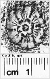 Image Description for https://www.wlb-stuttgart.de/kyriss/images/s0213322.jpg