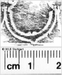 Image Description for https://www.wlb-stuttgart.de/kyriss/images/s0215307.jpg