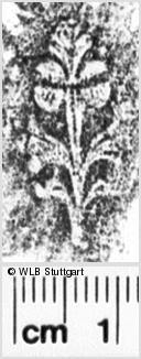 Image Description for https://www.wlb-stuttgart.de/kyriss/images/s0216007.jpg