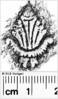 Image Description for https://www.wlb-stuttgart.de/kyriss/images/s0220703.jpg