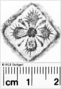 Image Description for https://www.wlb-stuttgart.de/kyriss/images/s0220902.jpg