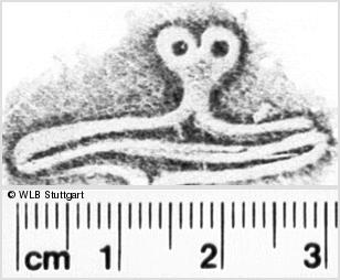 Image Description for https://www.wlb-stuttgart.de/kyriss/images/s0221804.jpg
