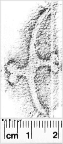Image Description for https://www.wlb-stuttgart.de/kyriss/images/s0222302.jpg