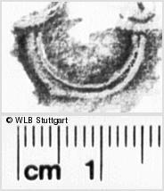 Image Description for https://www.wlb-stuttgart.de/kyriss/images/s0222521.jpg