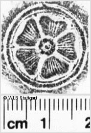Image Description for https://www.wlb-stuttgart.de/kyriss/images/s0223119.jpg