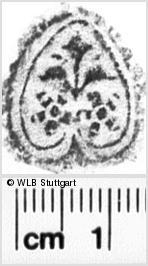 Image Description for https://www.wlb-stuttgart.de/kyriss/images/s0232717.jpg