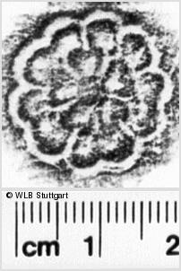 Image Description for https://www.wlb-stuttgart.de/kyriss/images/s0233303.jpg