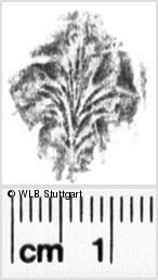 Image Description for https://www.wlb-stuttgart.de/kyriss/images/s0234308.jpg