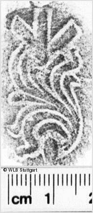 Image Description for https://www.wlb-stuttgart.de/kyriss/images/s0236717.jpg