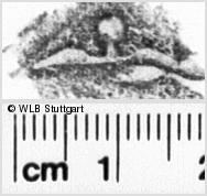 Image Description for https://www.wlb-stuttgart.de/kyriss/images/s0237005.jpg