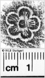 Image Description for https://www.wlb-stuttgart.de/kyriss/images/s0238009.jpg