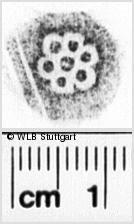 Image Description for https://www.wlb-stuttgart.de/kyriss/images/s0244808.jpg