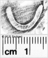 Image Description for https://www.wlb-stuttgart.de/kyriss/images/s0246009.jpg