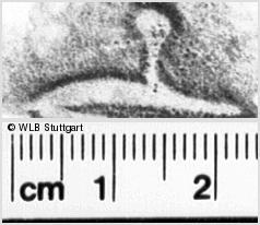 Image Description for https://www.wlb-stuttgart.de/kyriss/images/s0251515.jpg