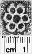 Image Description for https://www.wlb-stuttgart.de/kyriss/images/s0251622.jpg