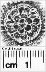 Image Description for https://www.wlb-stuttgart.de/kyriss/images/s0252008.jpg